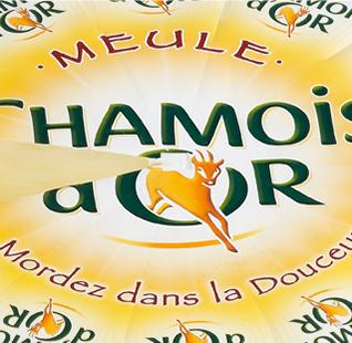 Chamois D'or <br> Золотая Серна